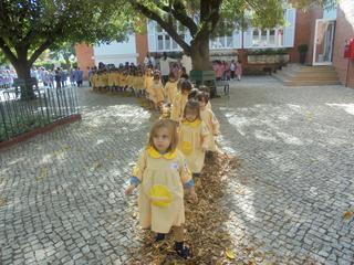 Dança das folhas 1