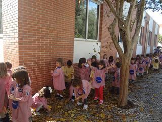 Dança das folhas 6