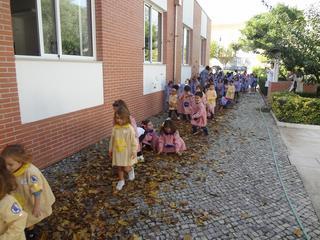 Dança das folhas 7